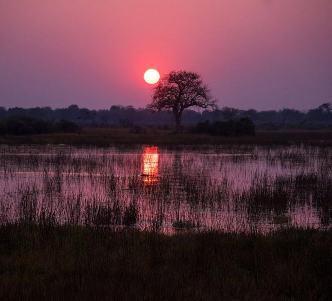 Janala Tours and Safaris - Chobe river
